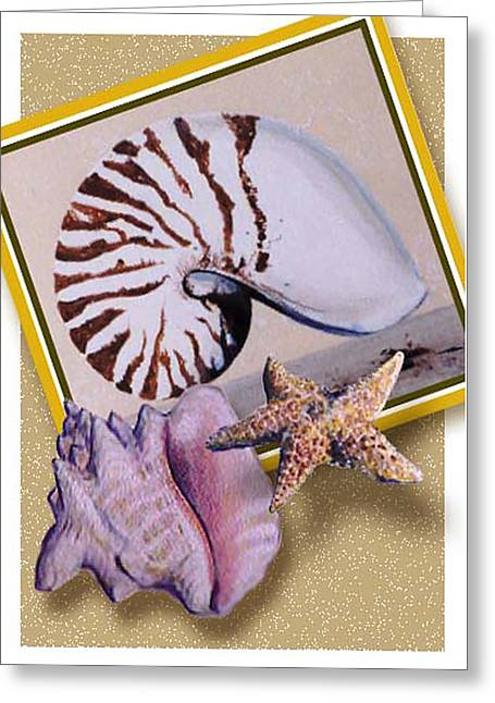 Shell Collage Greeting Card