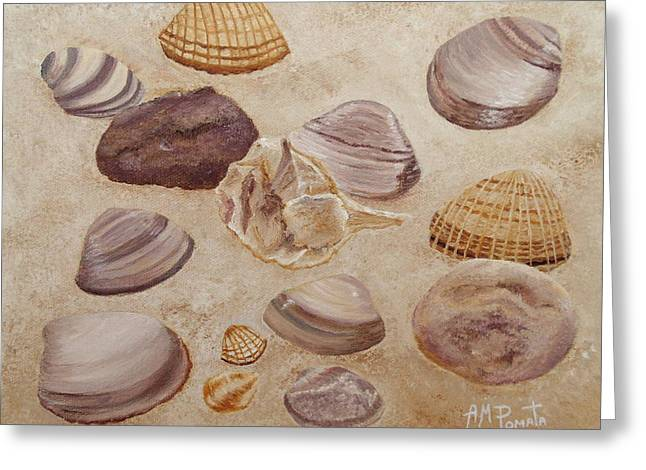 Shells And Stones Greeting Card