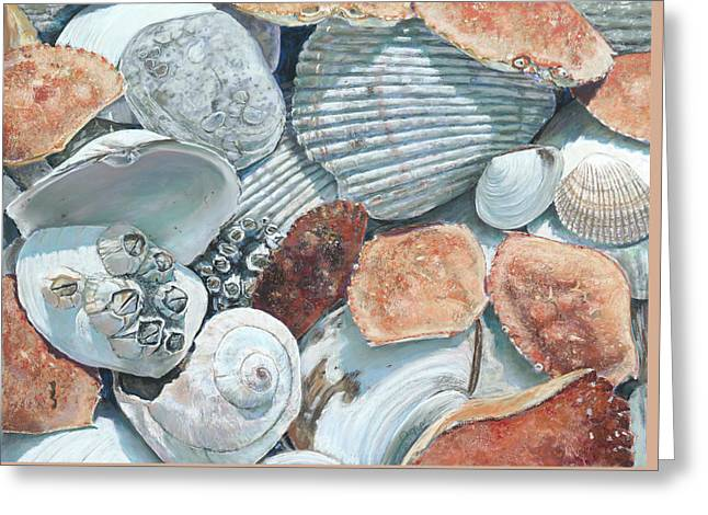 Shells Of The Puget Sound Greeting Card