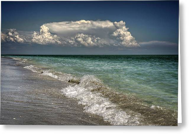 Shells, Surf And Summer Sky Greeting Card