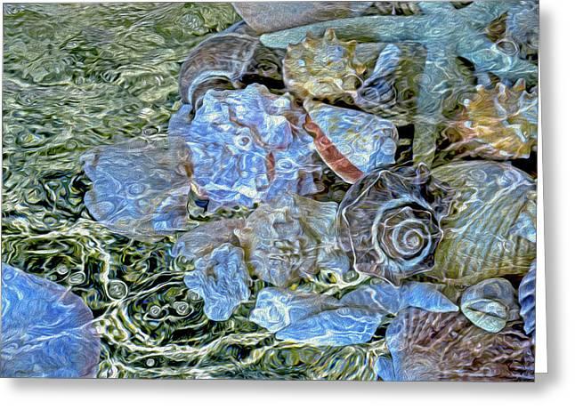 Shells Underwater 20 Greeting Card