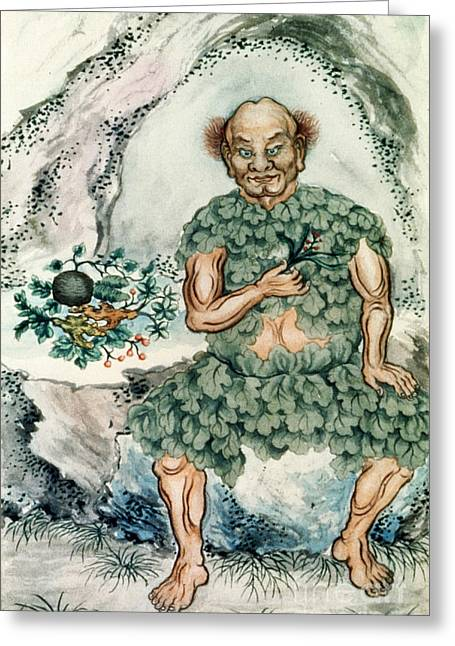 Shennong, Chinese God Of Medicine Greeting Card by Wellcome Images