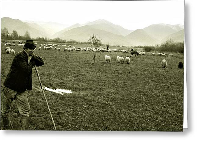 Shepherd In The Carpathians Mountains Greeting Card
