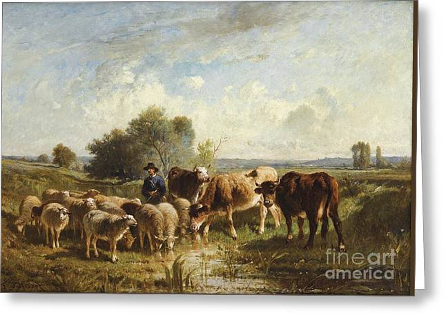 Shepherd With His Sheep Greeting Card by Celestial Images