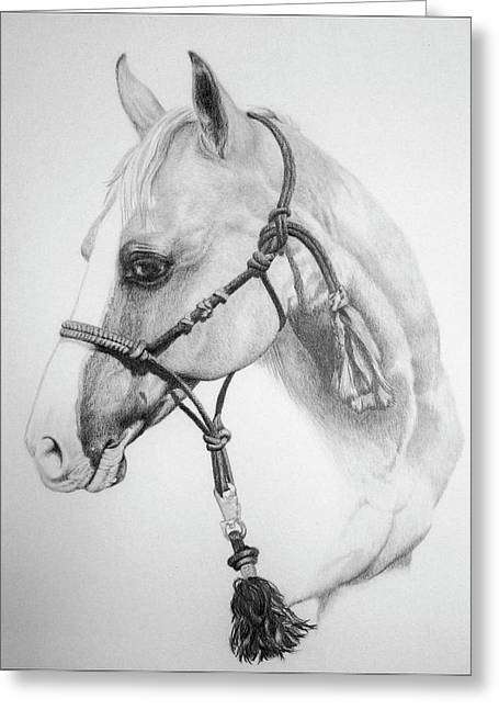 Ranch Drawings Greeting Cards - Shes the Gentle One Greeting Card by Tracy L Teeter