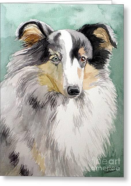 Shetland Sheep Dog Greeting Card