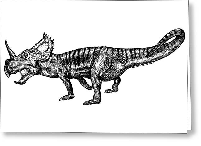 Shielizard Greeting Card by Karl Addison