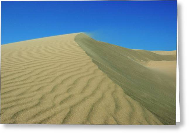 Shifting Dune Greeting Card by Lara Ellis