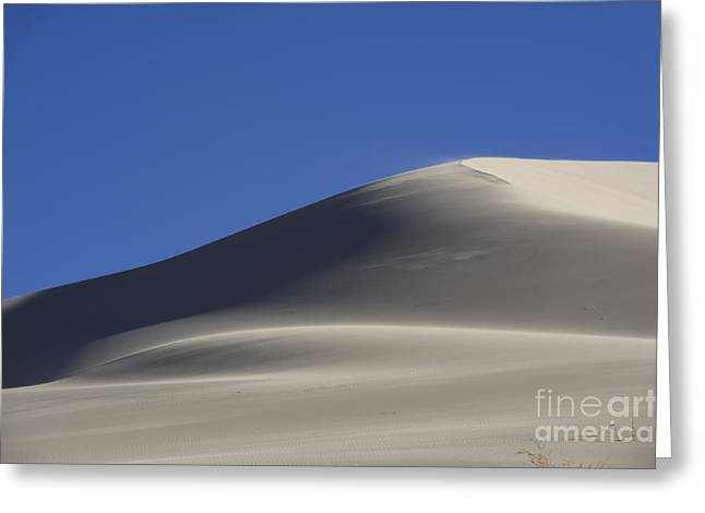 Shifting Dunes Greeting Card by Ron Hoggard
