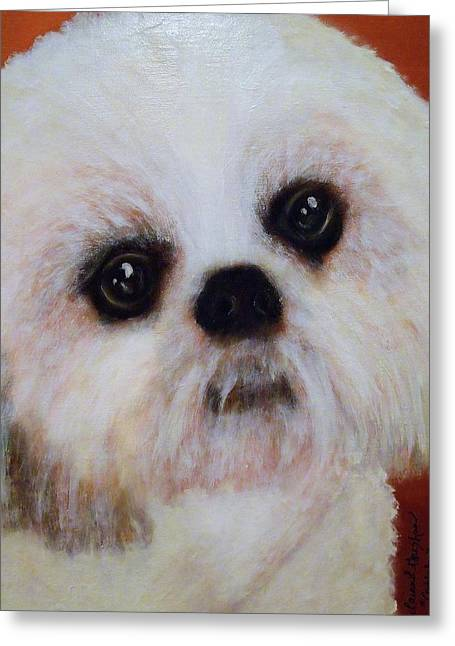 Commissions Pastels Greeting Cards - Shih-Tzu - Caddy Mo Greeting Card by Laura  Grisham