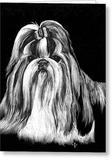 Greeting Card featuring the drawing Shih Tzu by Rachel Hames