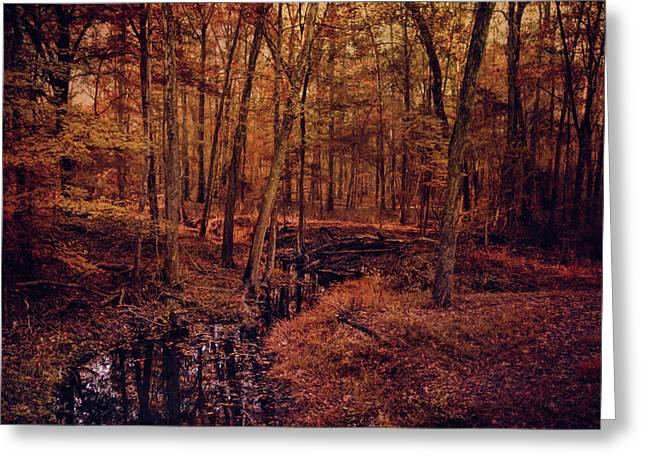Shiloh Creek 4 Greeting Card by Jai Johnson
