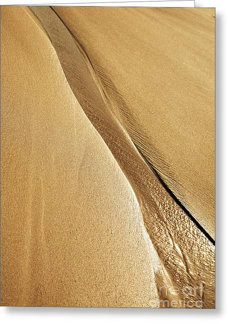 Shimmering Sand Greeting Card by Brandon Tabiolo - Printscapes