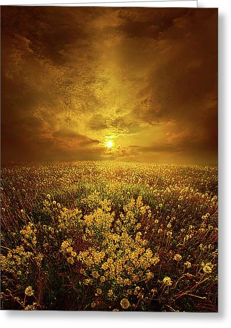 Shine On Me Greeting Card by Phil Koch