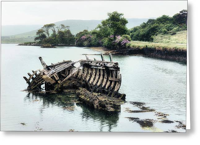 Ship Wreck Greeting Card by Joana Kruse