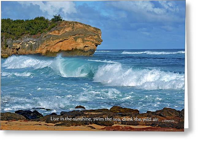 Shipwreck Beach Shorebreaks 2 Greeting Card by Marie Hicks