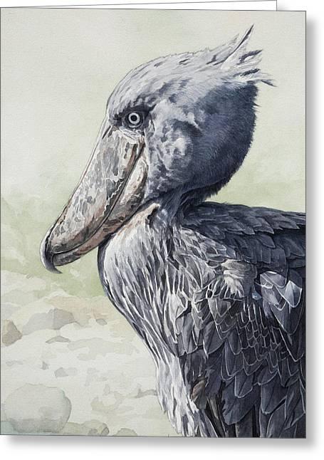 Shoebill Stork Portrait Greeting Card by Emmanuel De Guzman