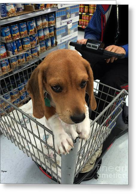 Shopping With Puppy  Greeting Card by Steven  Digman