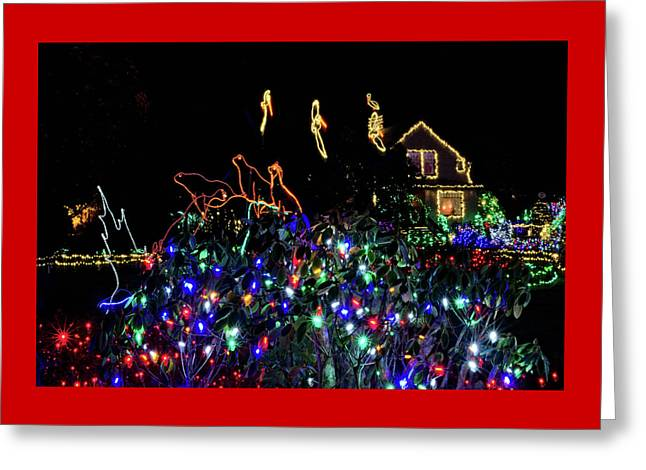 Shore Acres Xmas Lights One Greeting Card