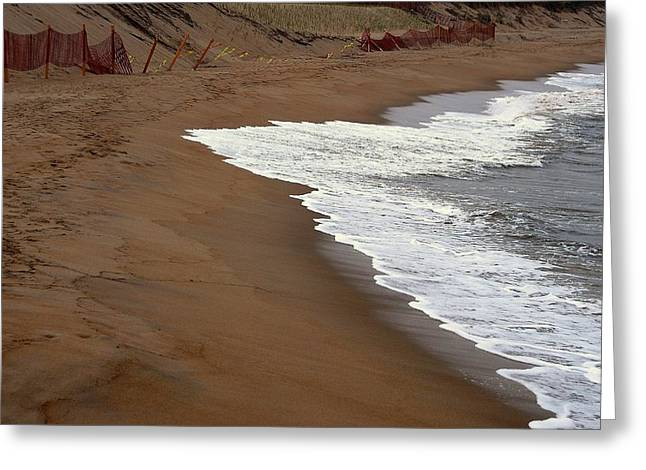 Shore Art - Plum Island Greeting Card