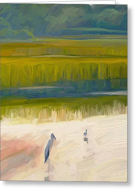 Shore Birds Greeting Card by Scott Waters