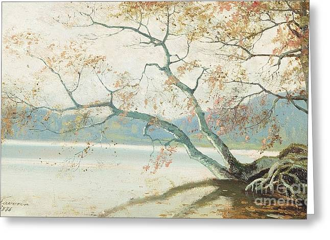 Shore Tree Greeting Card by Celestial Images