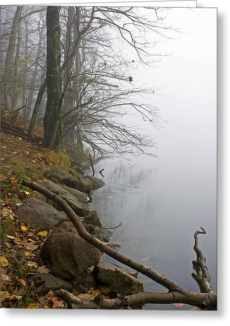 Greeting Card featuring the photograph Shoreline by Alan Raasch