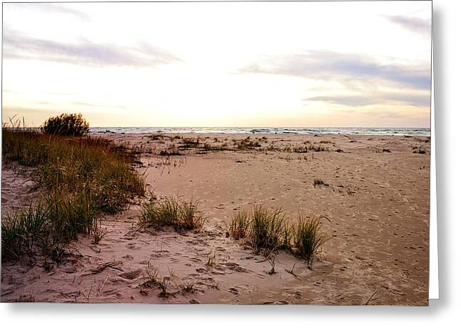 Greeting Card featuring the photograph Shoreline At Dusk by Michelle Calkins