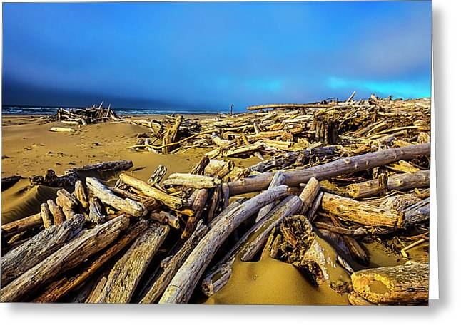 Shoreline Full Of Driftwood Greeting Card by Garry Gay