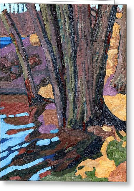 Shoreline Maples Greeting Card