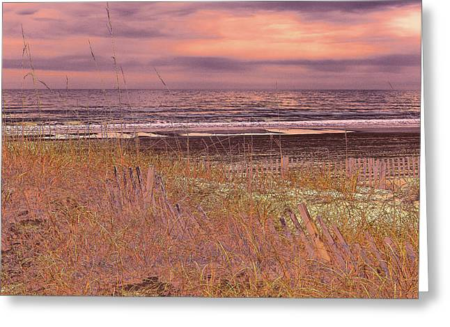 Shores Of Life Greeting Card