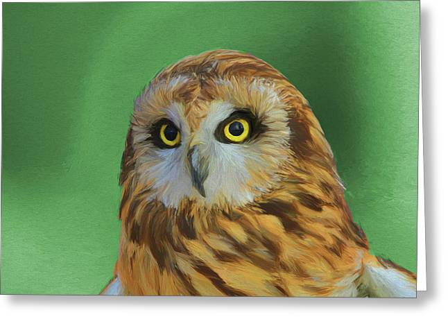 Short Eared Owl On Green Greeting Card by Dan Sproul