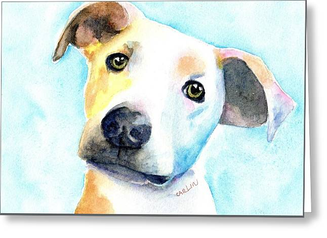 Short Hair White And Brown Dog Greeting Card