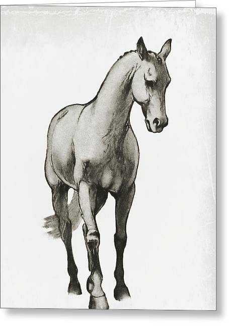 Shoulder-in Sketch Greeting Card by JAMART Photography