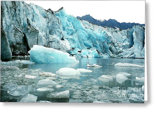 Shoup Glacier Greeting Card by Frank Townsley