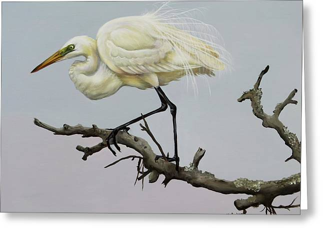 Show Off Greeting Card by Phyllis Beiser