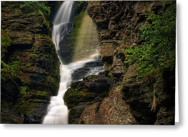 Shower Of Eden Greeting Card by Neil Shapiro