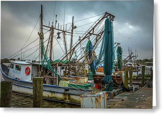 Shrimp Boat Fleet Greeting Card