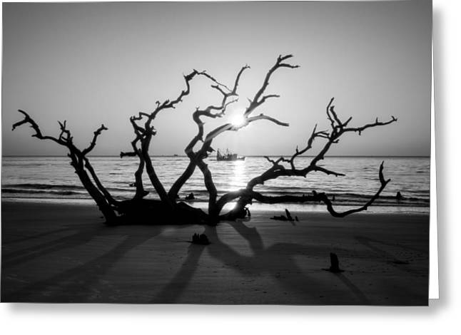 Shrimp Boat Off Driftwood Beach In Black And White Greeting Card