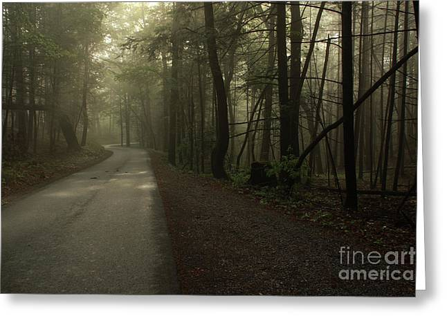 Shrouded Path Greeting Card by J L  Gould