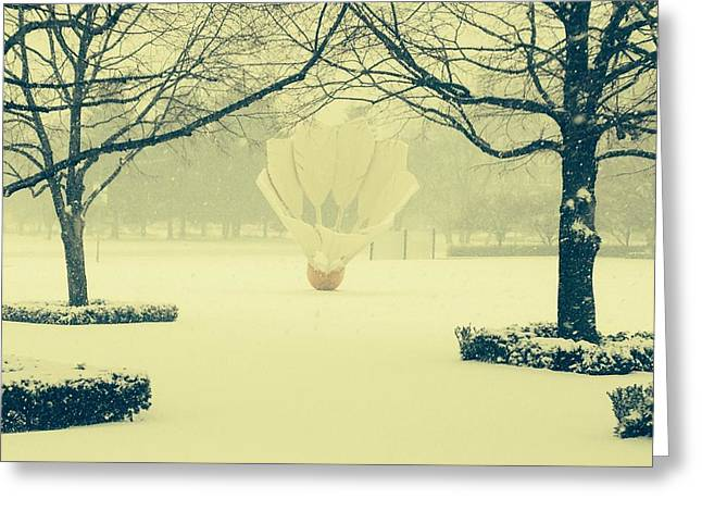 Shuttlecock In The Snow Greeting Card