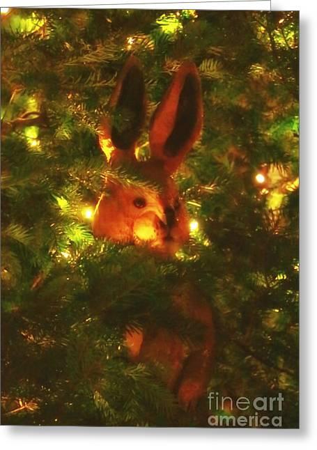Shy Jack Rabbit  Greeting Card by Elizabeth Dow