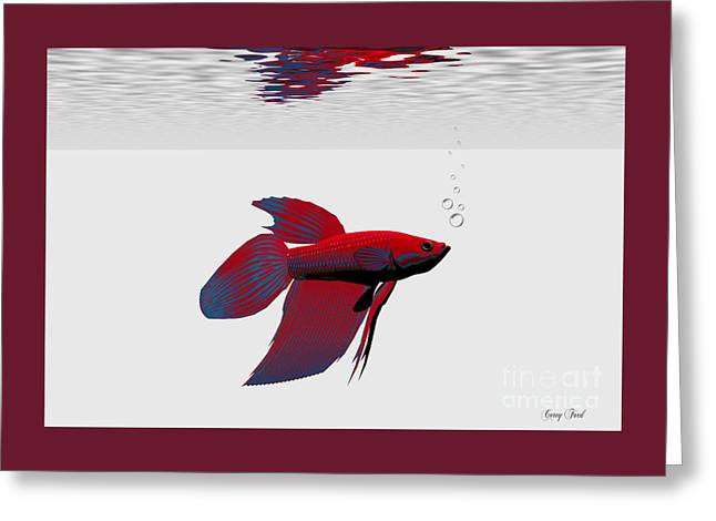 Siamese Fighting Fish Greeting Card by Corey Ford