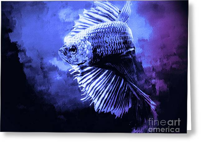 Siamese Fighting Fish Greeting Card by KaFra Art