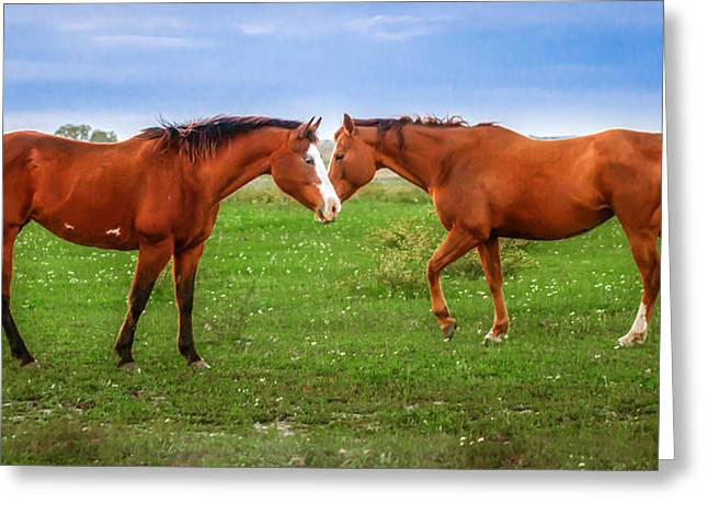 Greeting Card featuring the photograph Side By Side by Melinda Ledsome