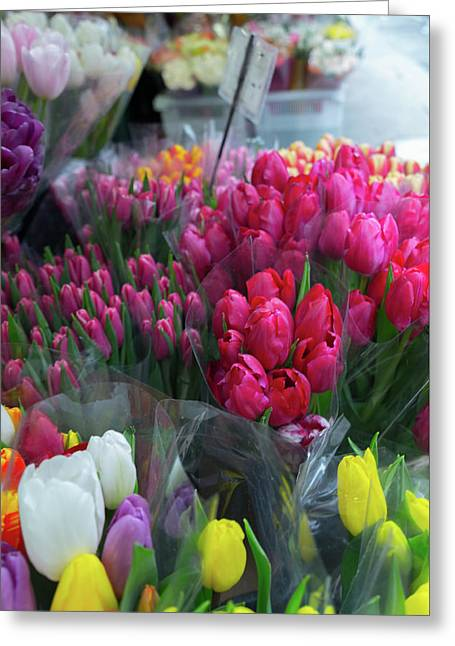 Greeting Card featuring the photograph Sidewalk Flowers by Lora Lee Chapman