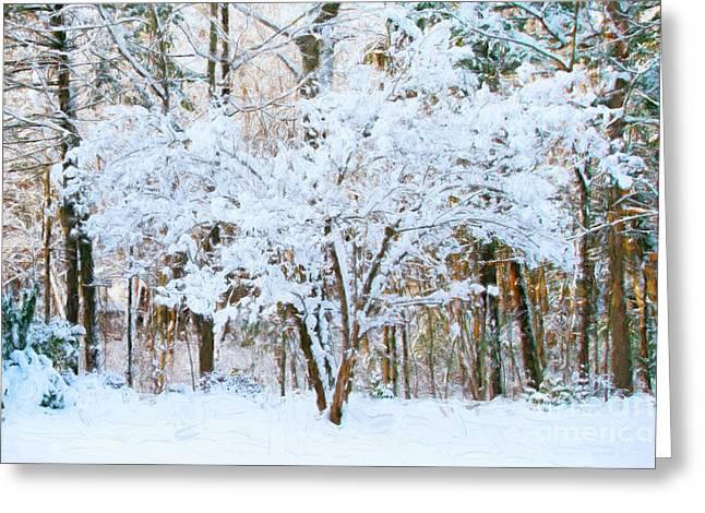 Siebold Viburnum In Snow Greeting Card
