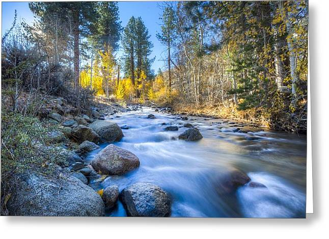 Sierra Mountain Stream Greeting Card