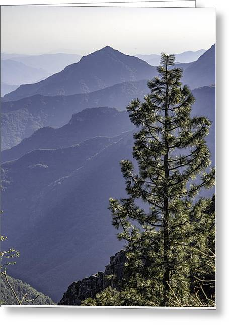 Greeting Card featuring the photograph Sierra Nevada Foothills by Steven Sparks