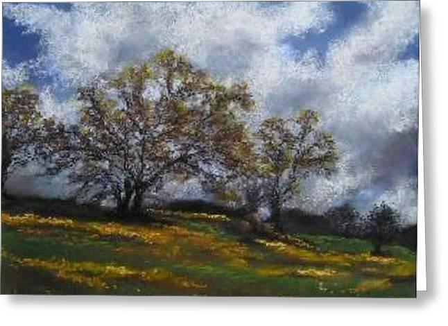 Sierra Wildflowers Greeting Card by Brenda Williams
